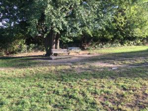 stamford-bench
